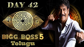 Bigg Boss Telugu Season 5